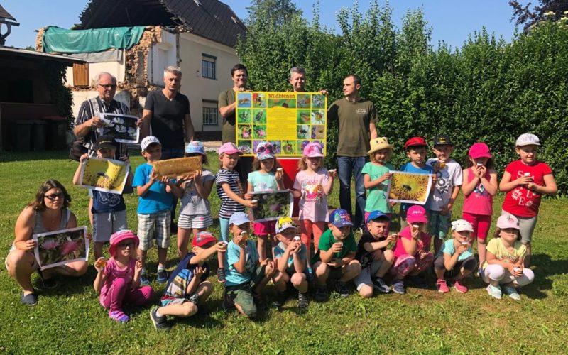 Die Kindergartenkinder lernen die Honigbiene kennen